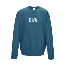 adult sweater  DIVA