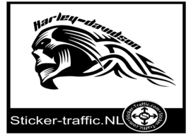 Harley Davidson flame tank sticker