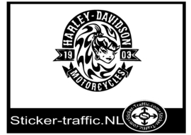 Harley Davidson design 25 sticker