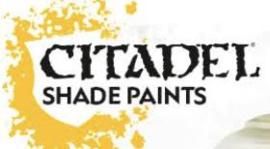 Shade paint - 24 ml