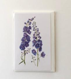 Card Delphinium
