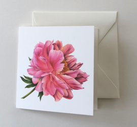 Card Peony 'Coral sunset'