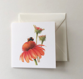 Card 'Bee with Sun Hat'