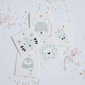 KD Collectie diertjes 5,5 by 5,5 cm - set van 5 kaartjes