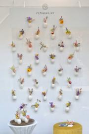 Installatie -Muurvaasjes  Papaverbollen