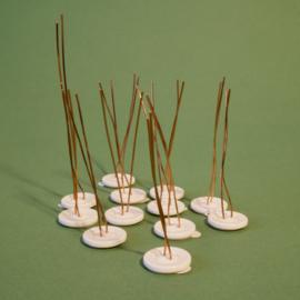 Plantknoopje | 12 stuks | wit met een randje | Ø 18mm