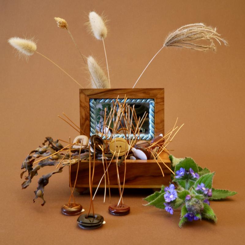 Plantknoopjes   12 stuks   VintageMix   Bruin
