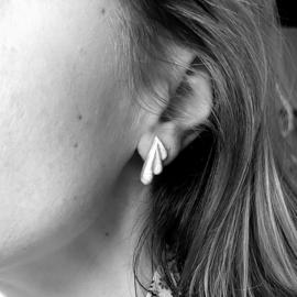 Geciseleerde oorstekers