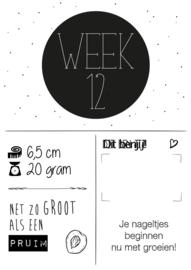 Zwangerschaps posters set A3 - ZWART WIT