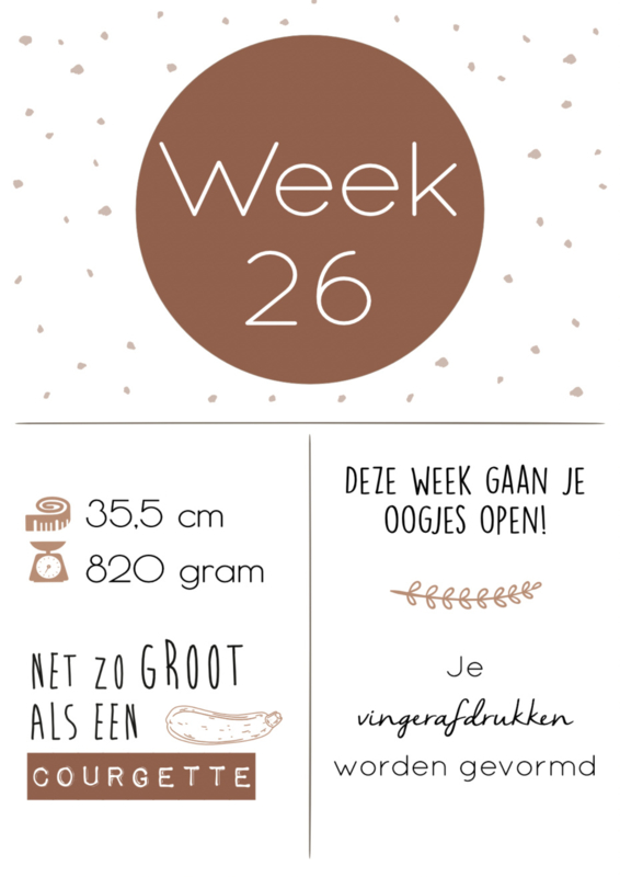 Zwangerschaps posters set A3 - ROEST