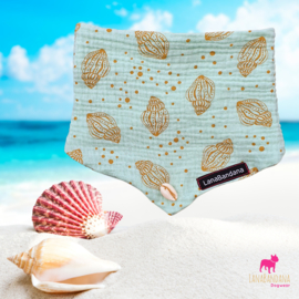 Pastel Sea Shell | Minty