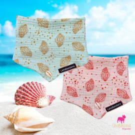 Pastel Sea Shell | Peachy