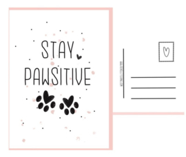 Dogcard - Stay Pawsitive