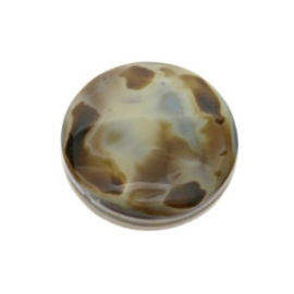 kraal schelp tiger cowrie blue/brown 20 mm p/10