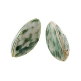 kraal schelp troca 3 zijdig naturel 30 x 10 mm p/10