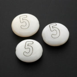 letterkraal schelp nummer 5 / 13 x 4 mm p/12