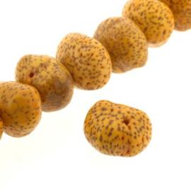 kraal zaden 15 mm p/25