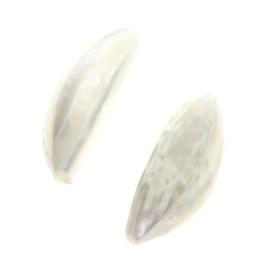 kraal troca shell garlic klein 25 x 10 mm  p/20