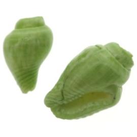 nasa schelp kraaltje +/- 100 stuks  (10x6mm) groen  p/100
