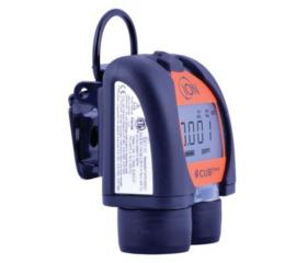 Verhuur: Cub ppb PID-meter