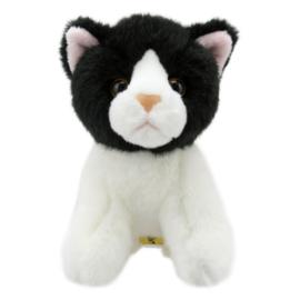 Zwart witte kat
