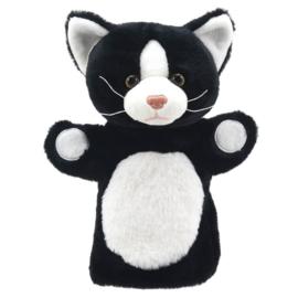 Zwart/witte kat