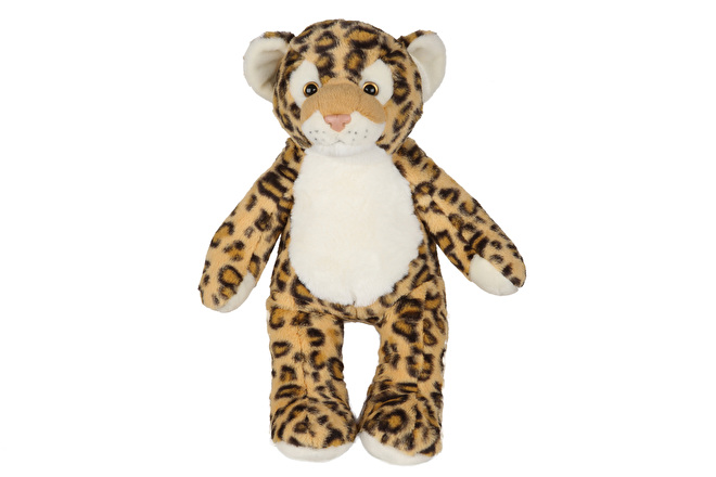 2571_NEW_Leopard[1].jpg