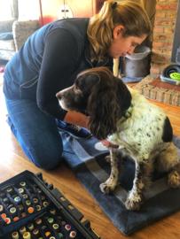 Inschrijven cursus hondenmassage eigen hond in april/mei