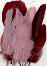 Veren bordeaux rood mix