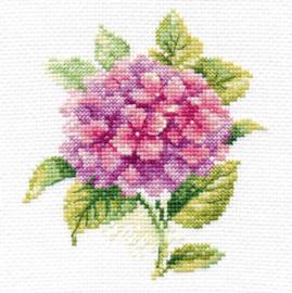 Overige Bloemen