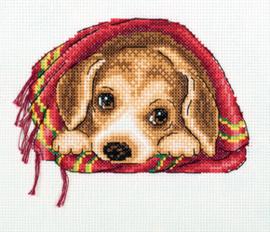 Borduurpakket Cosy Blanket - PANNA