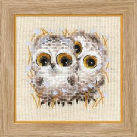 Borduurpakket Little Owls - RIOLIS