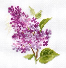 Sering - Lilac
