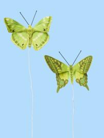 Vlinders Met Wikkeldraadje Groen