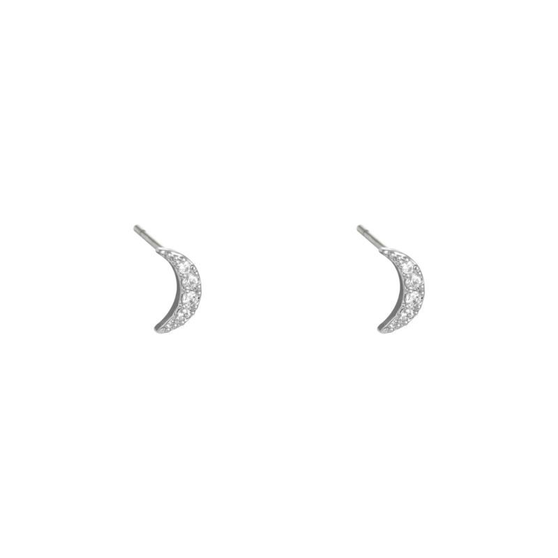To the moon - zilver