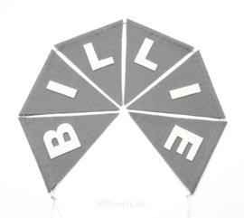 Vlaggenlijn, BILLIE