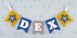 Naamslinger voor Dex, Ster