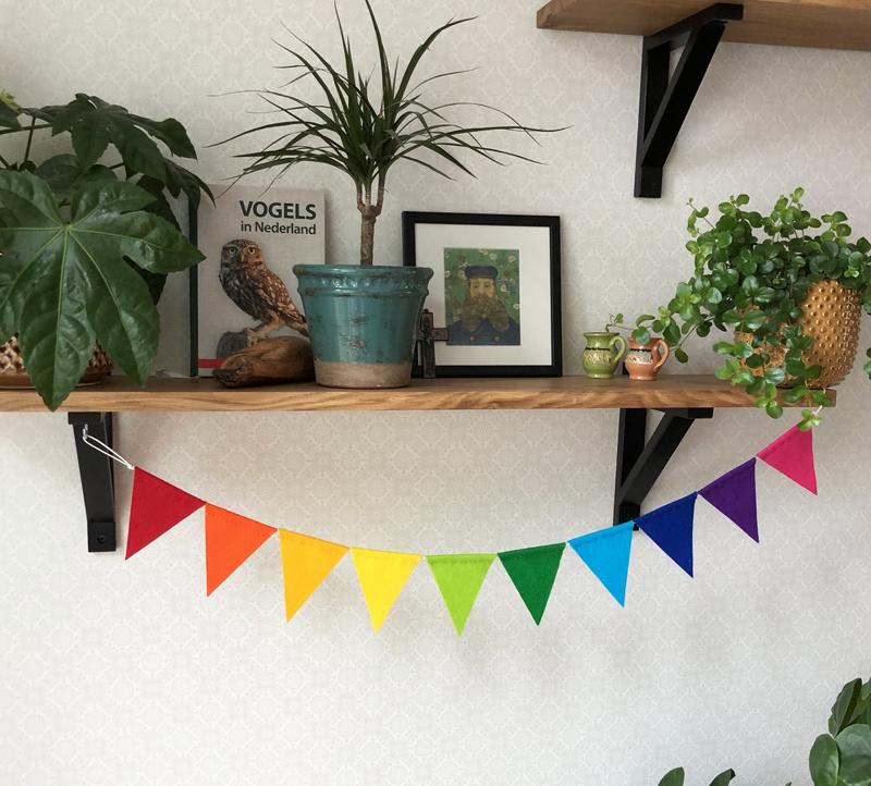 Vlaggenlijn MINI, Regenboog kleuren