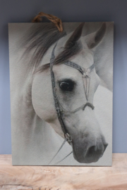 decoplaatje paard