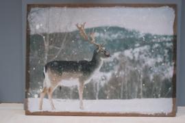 wandpaneel hert in de sneeuw