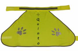 Honden Veiligheidshesje