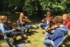 Fiddler Workshop (Incl. Zondag diner)
