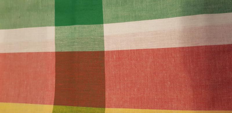 Pangi haarband Surinaamse vlag