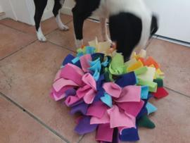 Snuffelkussen  Hond