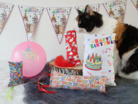 Verjaardagpakket kat