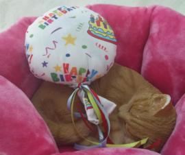 Snuffelballon Happy Birthday met lintjes