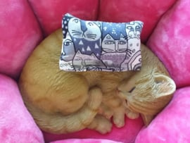 Snuffelzakje Fanatieke kat Picasso (Geur naar wens)