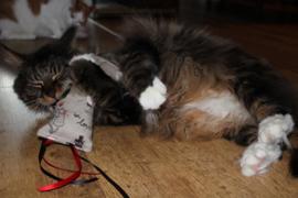 Snuffelzakje Meow met lintjes (gevuld met catnip én valeriaan)