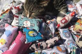 Snuffelzakje Verrassing + 3 cadeautjes (catnip)
