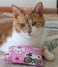 Snuffelzakje Kitty (catnip én valeriaan)